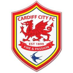 Opposition view: Cardiff City