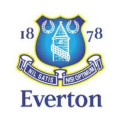 Opposition view: Everton