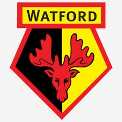 Opposition view: Watford