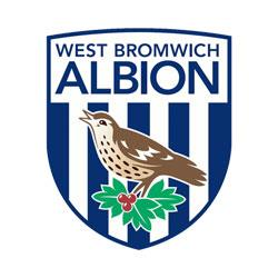 Opposition view: West Bromwich Albion