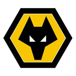 Opposition view: Wolverhampton Wanderers